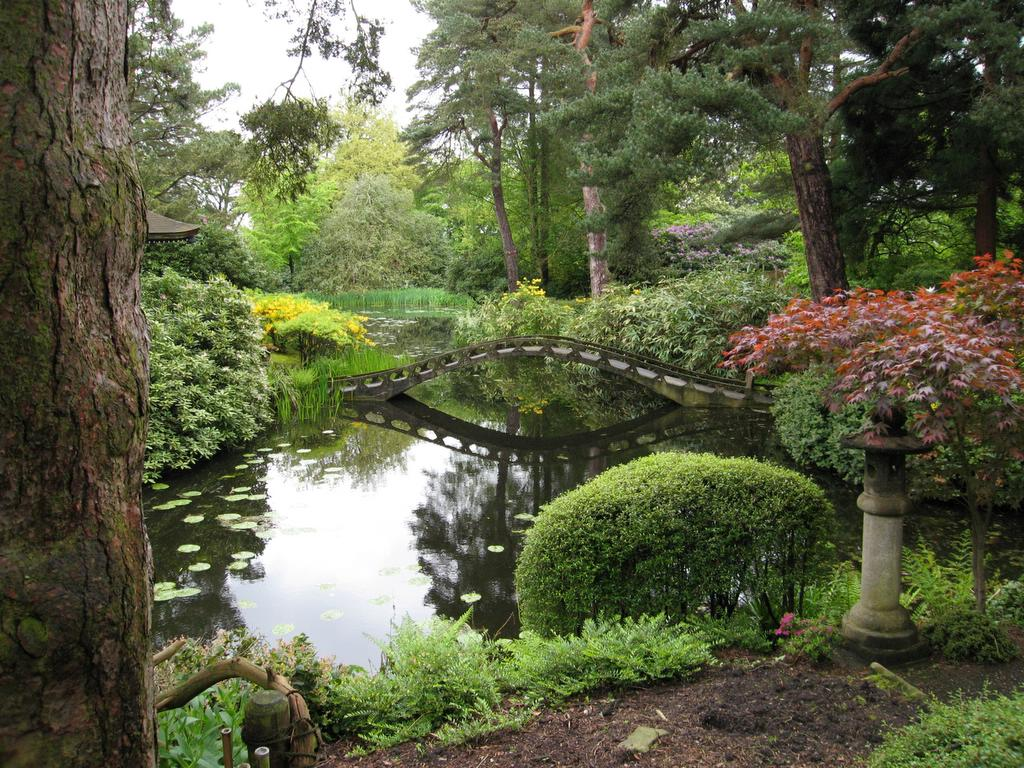 Japan society north west gallery 1 photographs - Japanese garden ...